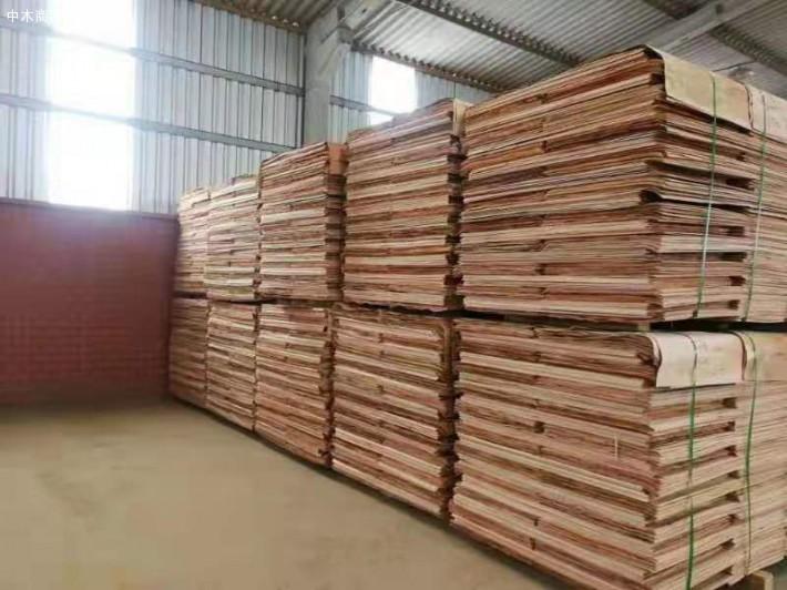 广西桉木板皮单板生产厂家实物视频厂家
