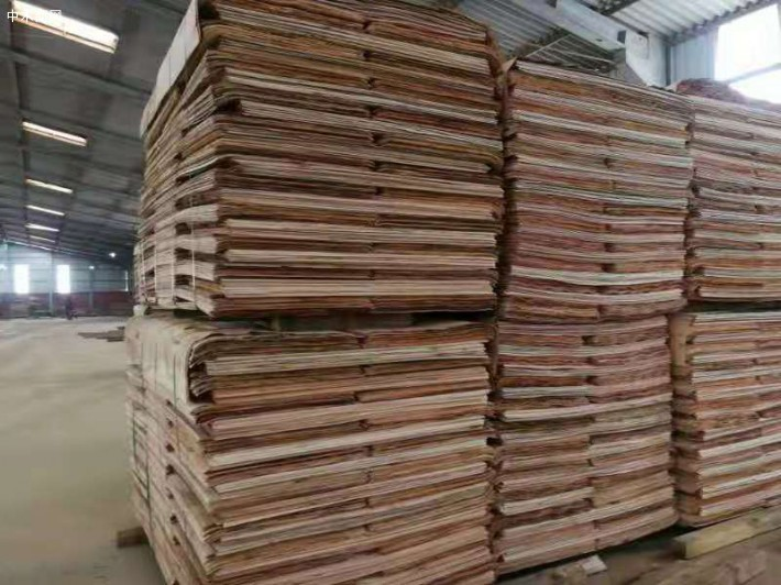 广西桉木板皮子价格多少钱一张批发