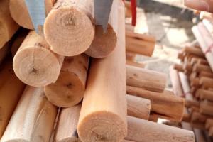 桉木木芯实物图片