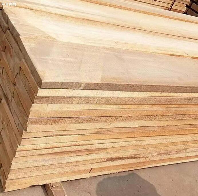 白杨木板材国内价格今日最新报价图片
