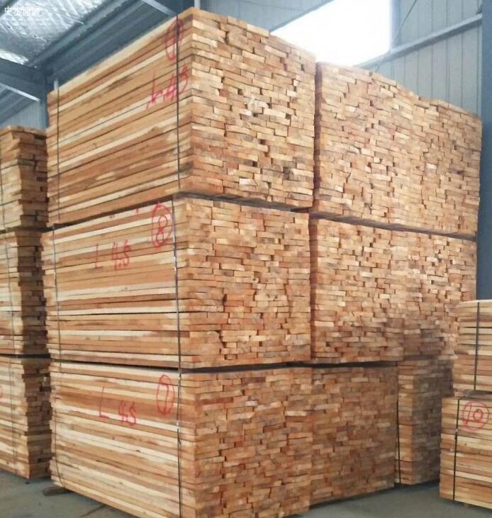 白杨木板材价格多少钱一立方米今日最新报价厂家