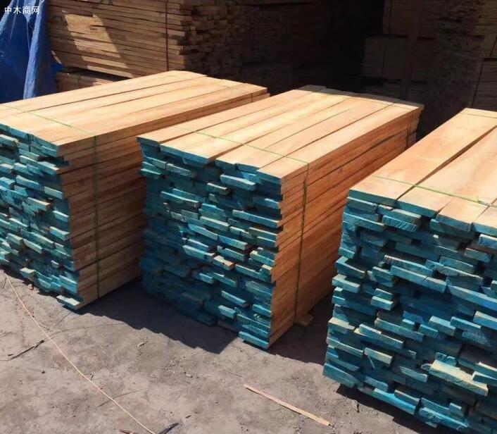 白杨木板材国内价格今日最新报价