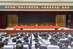 义堂镇召开临沂西城:全力推动木业转型升级,加快实现高质量发展