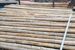 杉木木材前几年价格高涨,这几年杉木为何表现平平?未来又会怎样