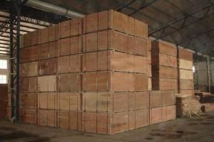 义堂镇一板材厂因大气污染治理设施不正常运转,企业被罚款10万元