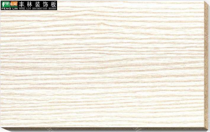 广西丰林木业人造板自动化生产基地建设通过验收