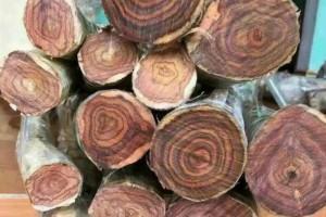 2019年越南木材出口达到115亿美元,超越目标