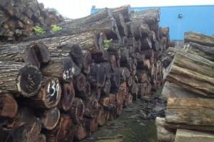 冒充红木家具木材的5种杂木,90%消费者不知道……