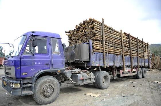 黔东南州榕江县多部门联合严查违规超载木材车辆