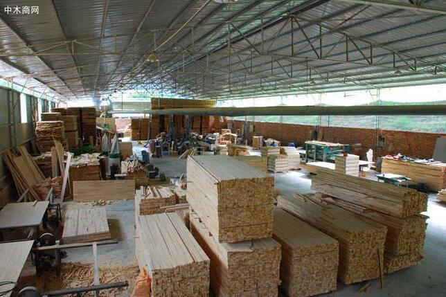 乱堆乱放,木屑飞扬——太仓高新区一木材加工作坊污染环境