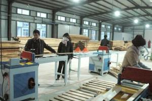 广西鹿寨打造木材加工百亿元产业