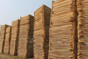 白杨木板材这种木材做家具的优点及河南白杨木烘干板最新价格报价
