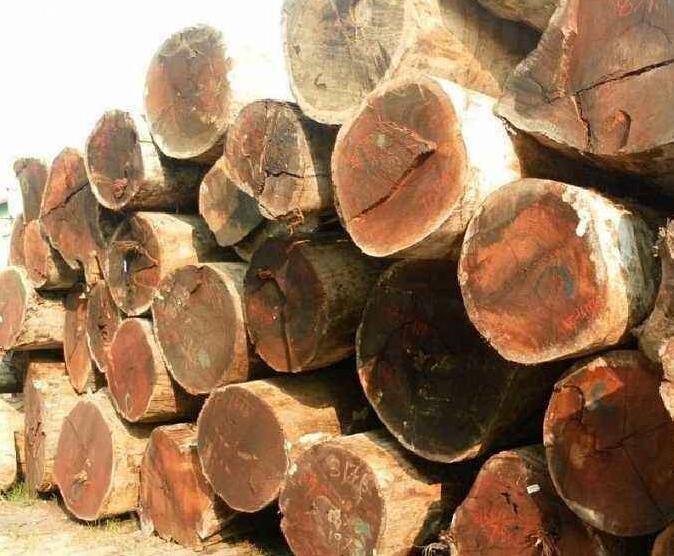 南印度原木价格多少钱一吨_2020年1月14日