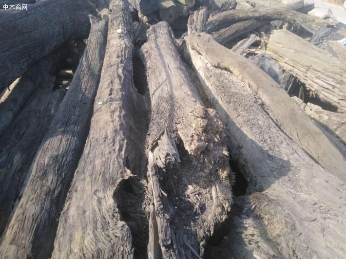 阴沉木价格多少钱一斤厂家