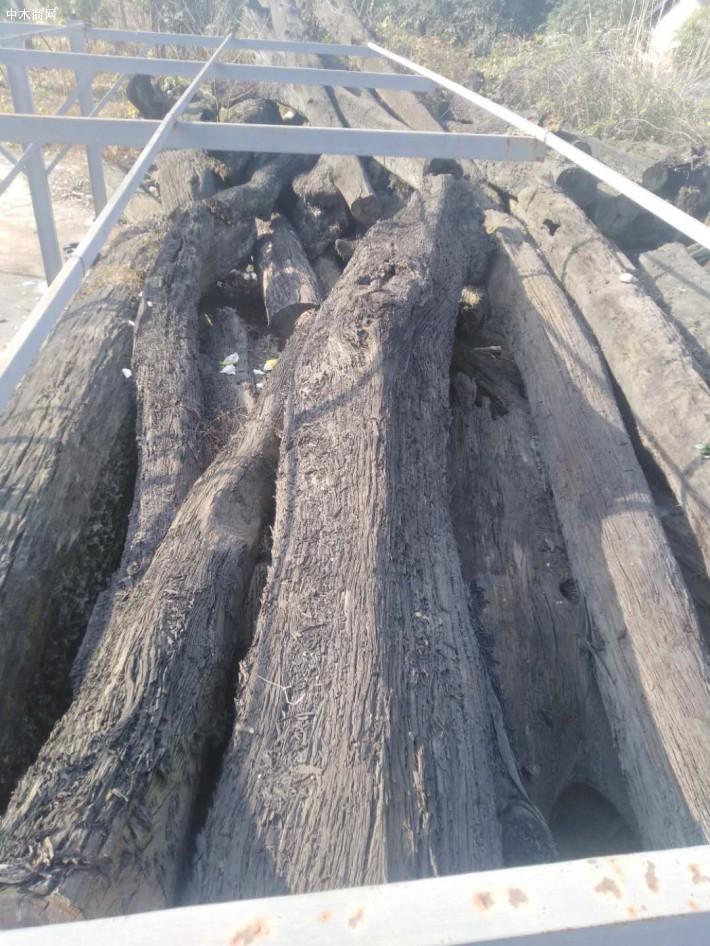 阴沉木价格多少钱一斤批发