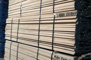 上海福人木材市场白橡、红橡锯材价格多少钱一方_2020年1月17日