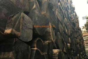 非洲西部原木价格多少钱一立方米_2020年1月17日