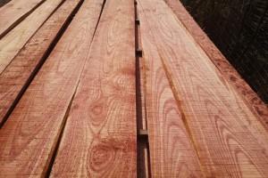 血椿木板材也叫红椿木板材,香椿木烘干板价格多少钱一立方米