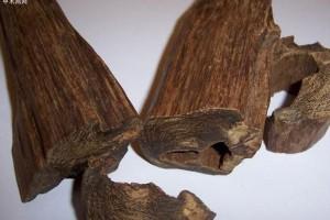 什么是沉香? 沉香手串保养的6种方法?