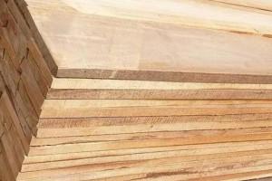 白杨木板的优缺点?河南白杨木板材的用途有哪些