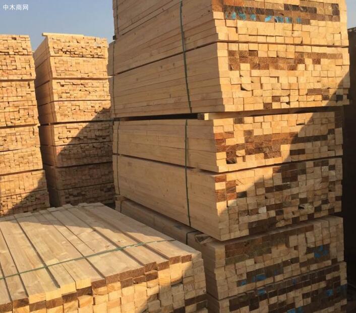 太仓建筑木方4x6木方多少钱一根?