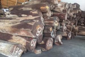供应哥斯达黎加微凹黄檀原材料黑酸枝木