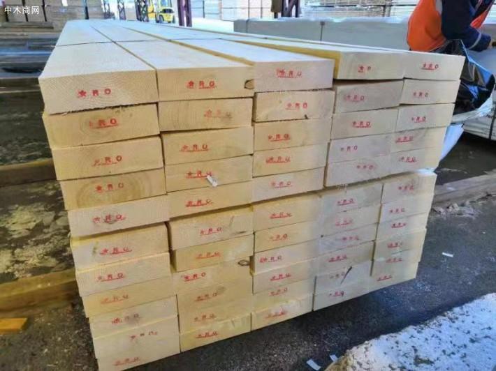 俄罗斯US出口级白松木板材