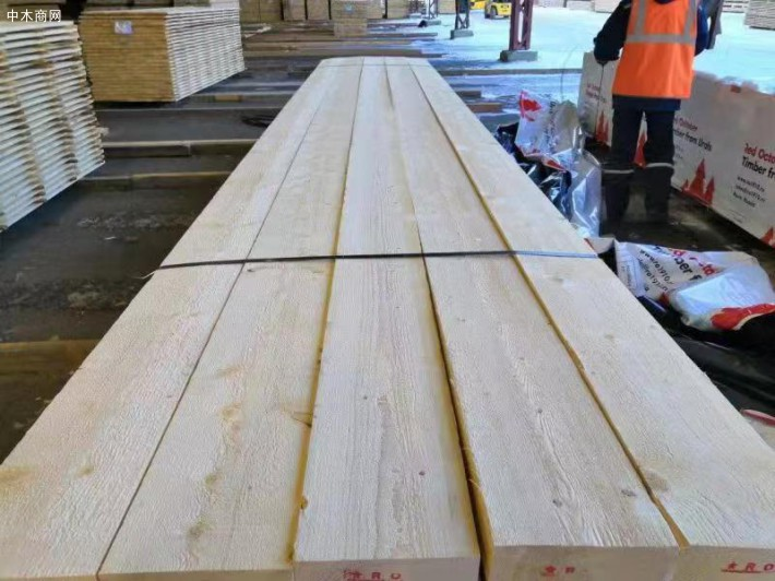 白松木板材今日最新报价