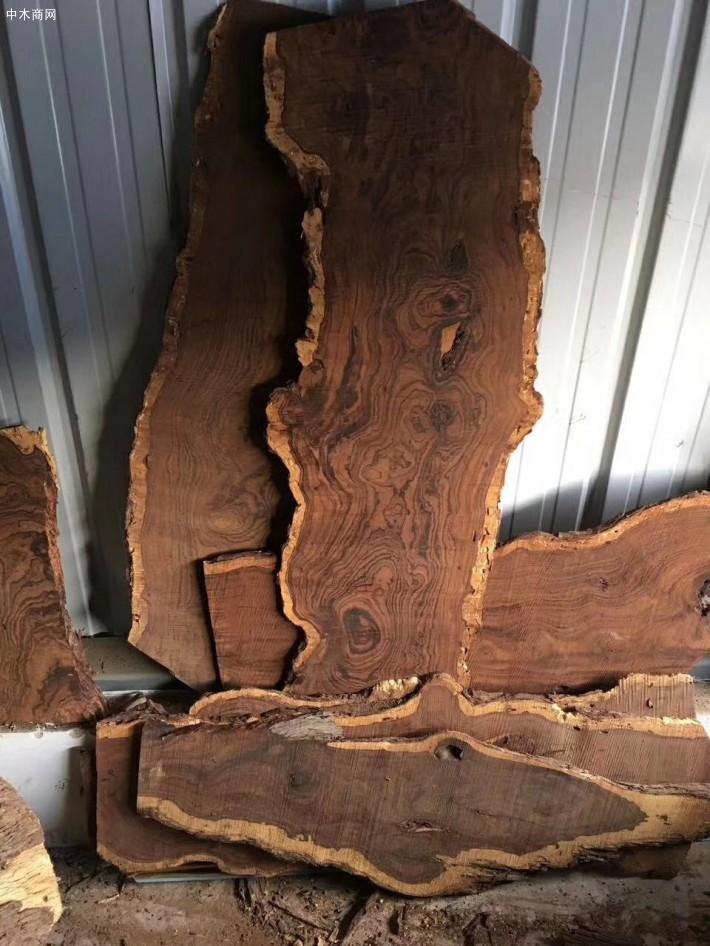 沙漠铁木原木厂家直销图片