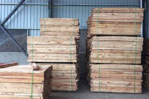 水杉锯材厂家批发价格