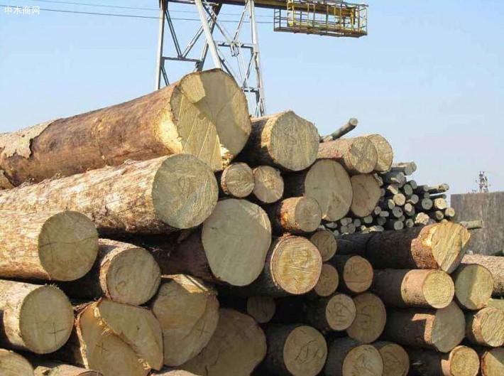 江苏苏州太仓(重庆)创秋木业加工厂是一家专业经营进口澳洲白松原木品牌企业