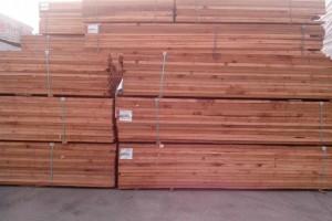 上海港榕红雪松板材长期供应