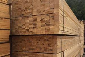 太仓市国亮木业云杉铁杉花旗松建筑木方产品图片