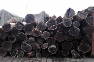 黑酸枝木有哪几种?黑酸枝木家具怎么鉴别真假?