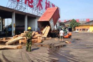 非洲原装进口木材刺猬紫檀精品方料现货出售