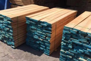 甘肃省瓜州县做好木材加工企业疫情防控和安全生产检查工作