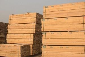 白松建筑木方厂家