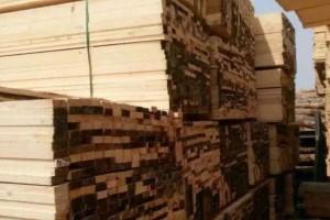 樟子松木方批发价格