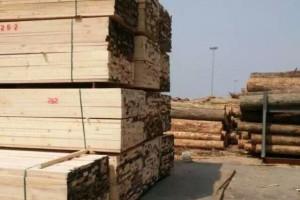 辐射松建筑方木厂家直销