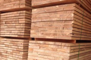 小斑马木板材价格多少钱一立方米_2020年2月21日
