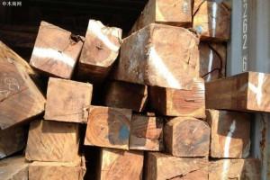 专业供应老挝花枝原木,巴里黄檀原木