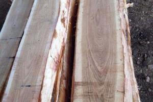 俄罗斯进口橡木锯材_橡木板材批发
