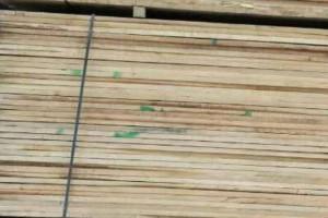 特价俄罗斯锯材椴木,榆木,进口水曲柳锯材,柞木板材及原木