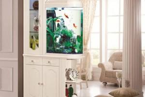 水族箱,玻璃水族箱,鞋柜式水族箱,鱼缸壁挂式水族箱