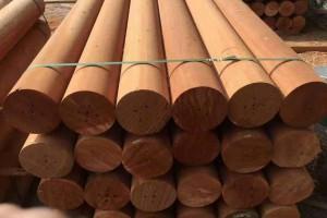红檀香、菠罗格原木价格多少钱一立方米_2020年2月28日