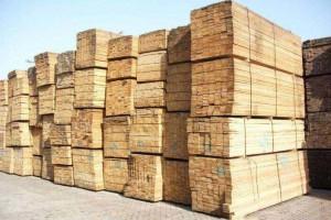 俄罗斯科斯特罗马州希望扩大对华出口木材加工产品