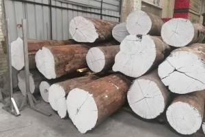 亚马逊花梨原木实物高清图片