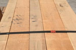 北美樱桃木板材海关拍卖低价
