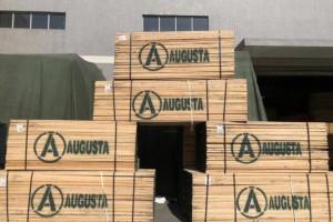 2019年福建金森净利461.82万减少90.30%,木材销量减少
