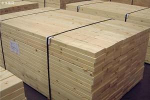 山东临沂北方木都考察组到覃塘区开展木材产业发展考察活动